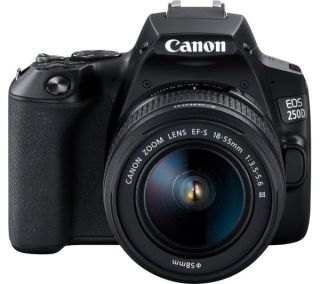 The compact but quality Canon EOS 250D is an ideal family camera