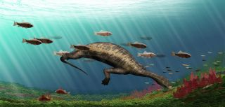hammerhead reptile illustration