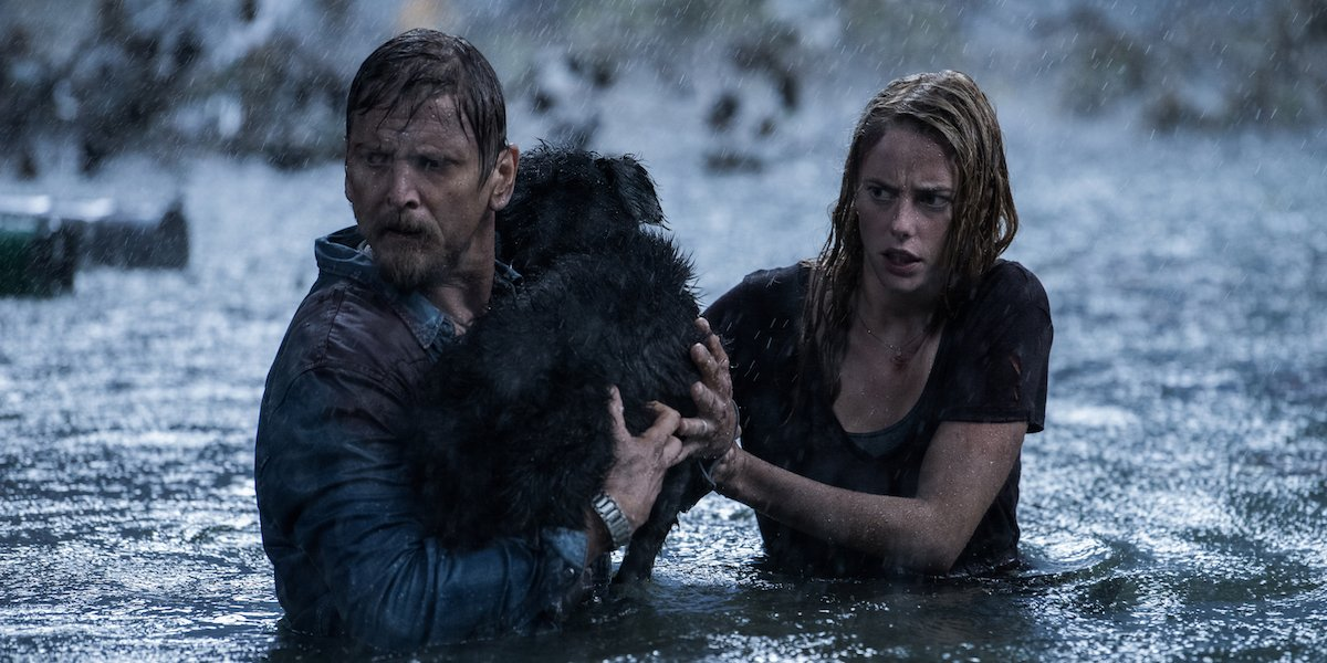 Barry Pepper rescues a dog with Kaya Scodelario in Crawl