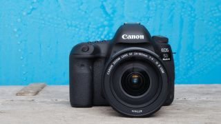 The best DSLR cameras
