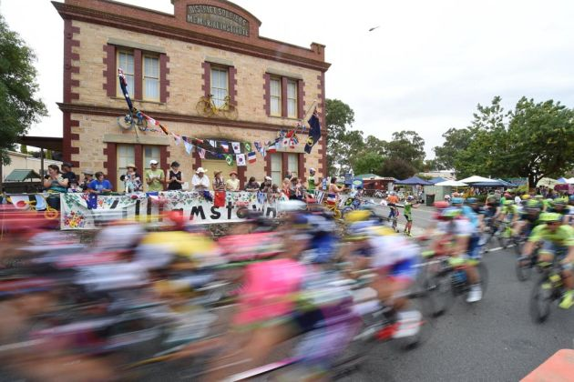 The peloton on stage 1 of the 2016 Tour Down Under