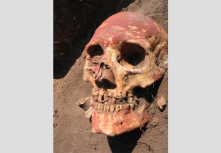 A human skull from the Bronze Age