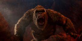 Godzilla Vs. Kong Director Reveals Hilarious Advantage To Kong Knowing Sign Language