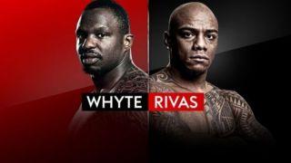 whyte vs rivas live stream boxing online