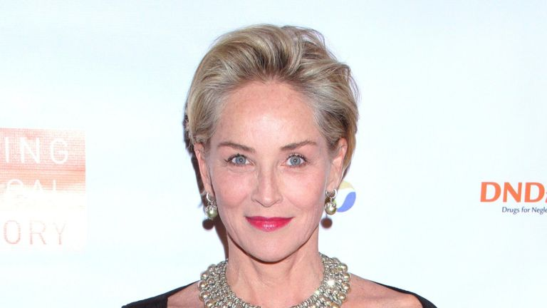 Sharon Stone shared shocking details of her near-death experience on the Late Late Show with James Corden /Media Punch/Alamy Live News