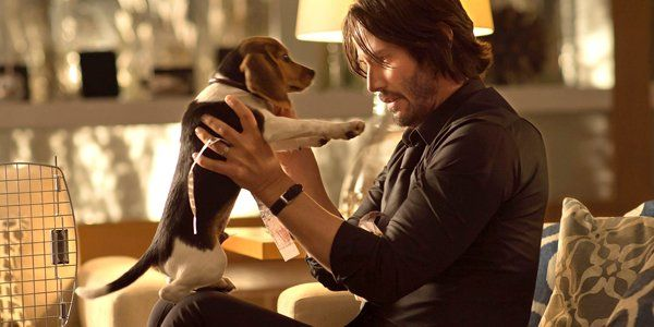 John Wick's National Puppy Day Trailer Shoots Right To The