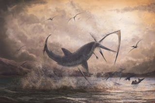 Fossil evidence paints a paleontological scene of a battle between a shark and a flying reptile called a pteranodon.