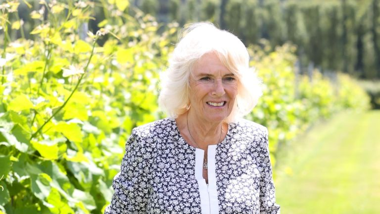 Duchess Camilla of Cornwall holds a vine leaf during a visit to Llanerch Vineyard on July 07, 2021