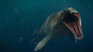 An artist's impression of a Mosasaurus swimming with its mouth open.