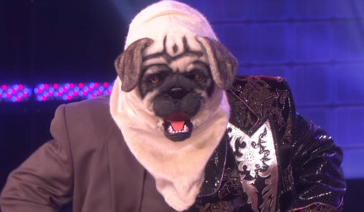 Dog The Masked Dancer The Masked Dancer