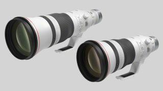 Canon RF 400mm f/2.8L IS USM Canon RF 600mm f/4L IS USM
