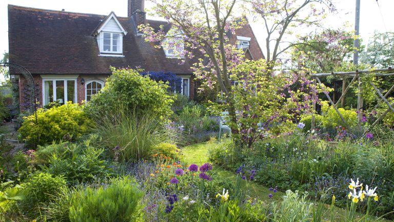 cottage garden martin planting