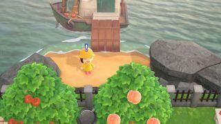 Animal Crossing: New Horizons secret beach