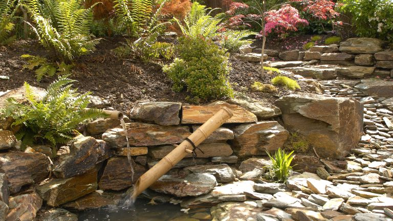 Rock garden ideas featuring bamboo and flowerbeds with ferns.