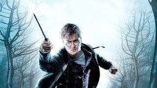 Harry Potter TV show