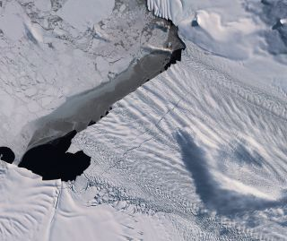 A photo from Europe's Copernicus Sentinel-2 satellite shows two gargantuan cracks forming along the edge of Antarctica's Pine Island Glacier, one of the fastest-shrinking glaciers on the continent.