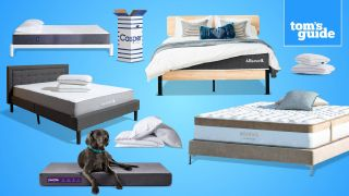 Bedding sales