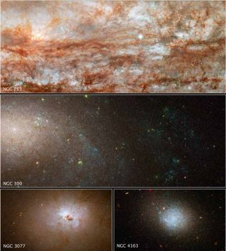 Galaxy Diversity Reveals Clues to Cosmic Evolution