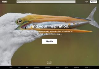 The home page of image gallery site Flickr