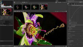 6 amazing free Adobe CC alternatives | Creative Bloq