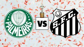 Palmeiras vs Santos Copa Libertadores final live stream