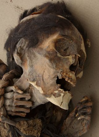 chilean mummy face