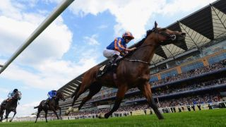 royal ascot live stream