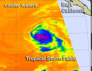 Post-tropical storm Fabio