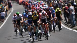 299cd0abd Watch the world's best compete for the yellow jersey in France. Shares. 2019  tour ...
