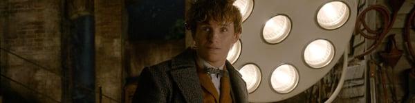 Eddie Redmayne Newt Scamander Fantastic Beasts The Crimes Of Gridelwald