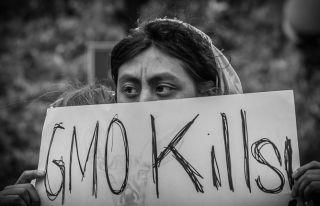 Women protesting GMOs