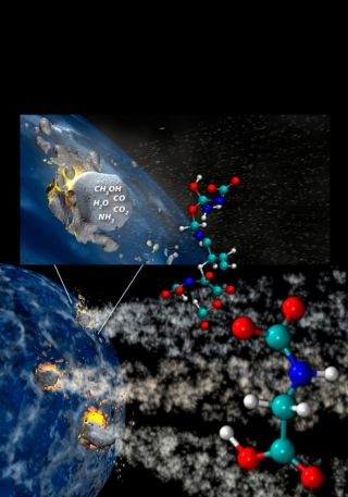 Comets Contain Elements for Life