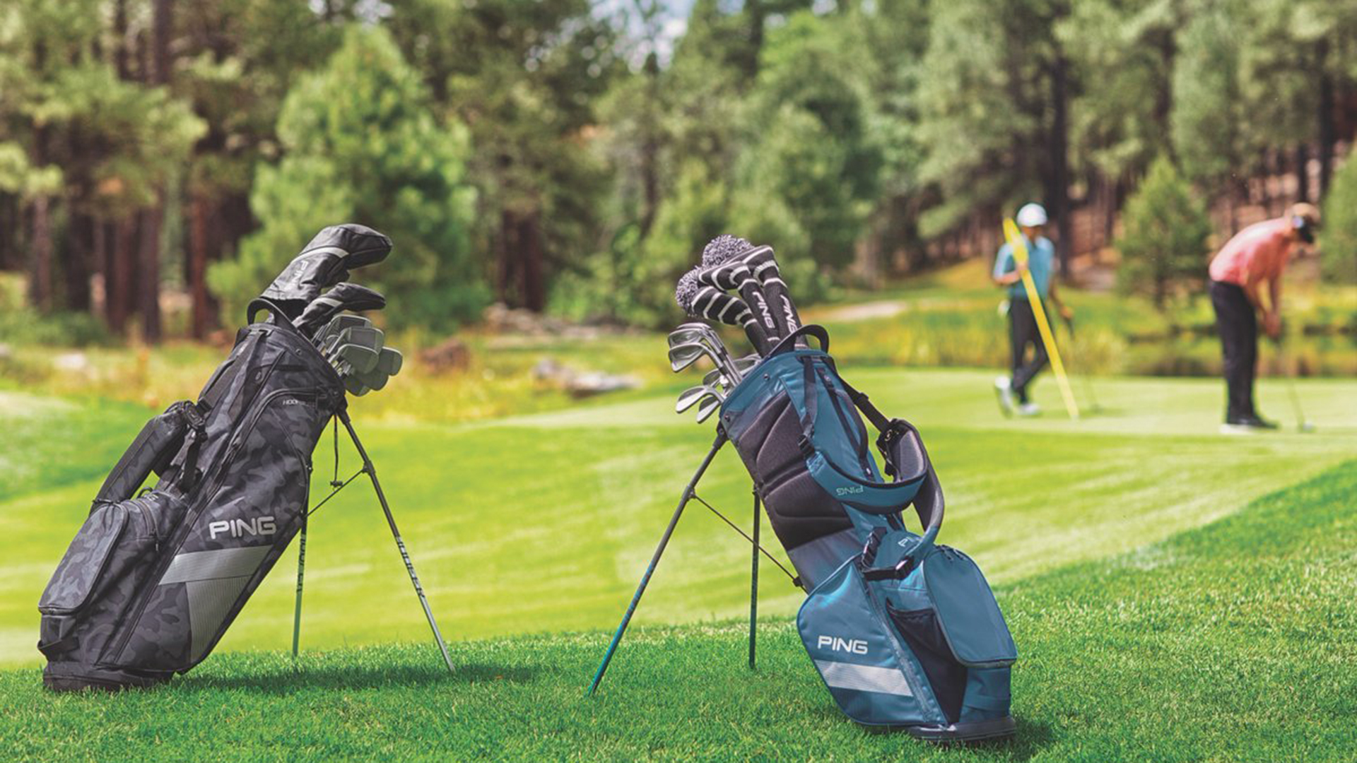 Stand And Cart Golf Bags