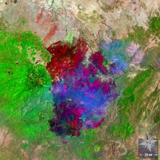 A Landsat 5 image of the Wallow Fire, the largest wildfire in Arizona's history. I