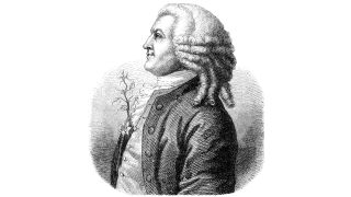 Sketch of Carl Linnaeus' portrait with a plant sprouting from his chest.