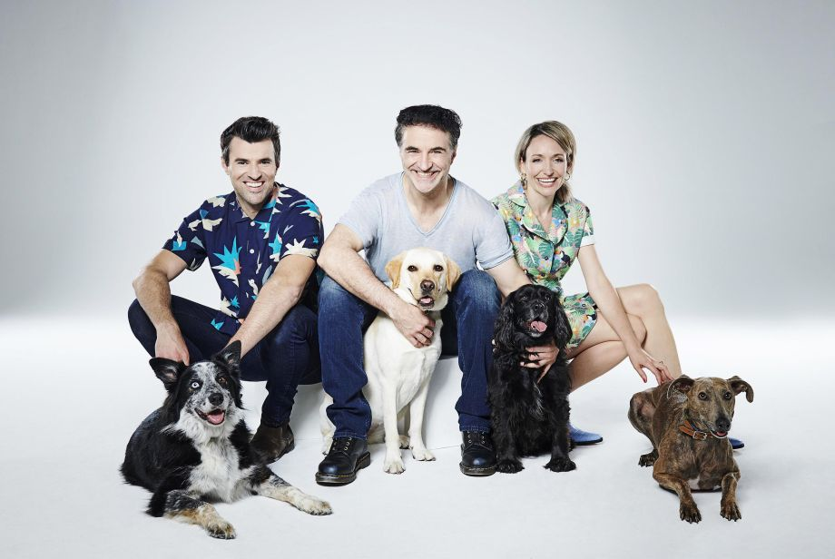 Steve Jones, Noel Fitzpatrick and Kate Quilton