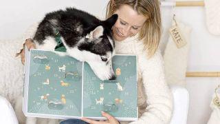 best dog advent calendars: Wüfers dog cookie calendar