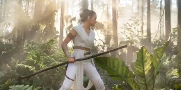Rey with a stick