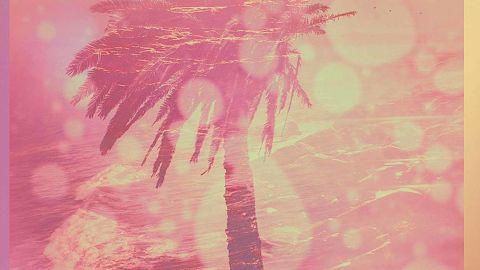 Chon - Homey album artwork