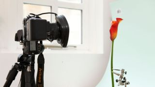How to build a home photography studio