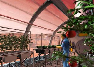 Delightful Could Space Farmers Grow Crops On Other Planets?