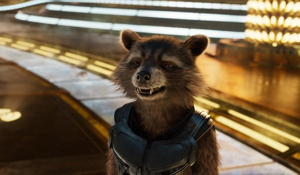 Guardians of the Galaxy Vol 2 Rocket Smiling