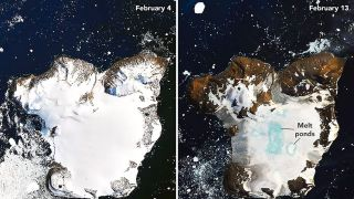Antarctica's Eagle Island on Feb. 4 and Feb. 13, 2020.