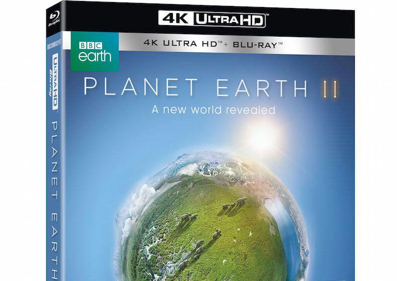 5 things we learned watching Planet Earth II on Ultra HD Blu