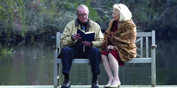 the notebook alli and noah old
