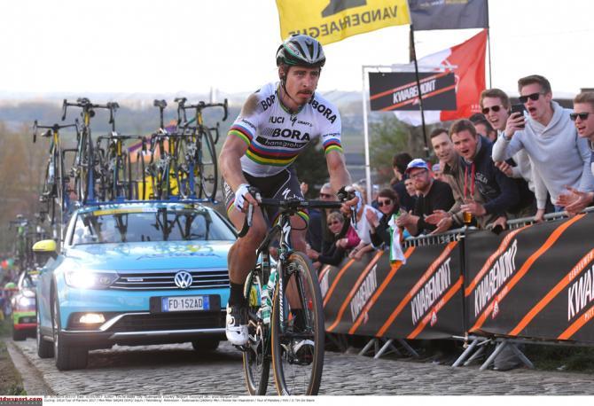 Peter Sagan (Bora-Hansgrohe) saw his Flanders go up in smoke after a crash