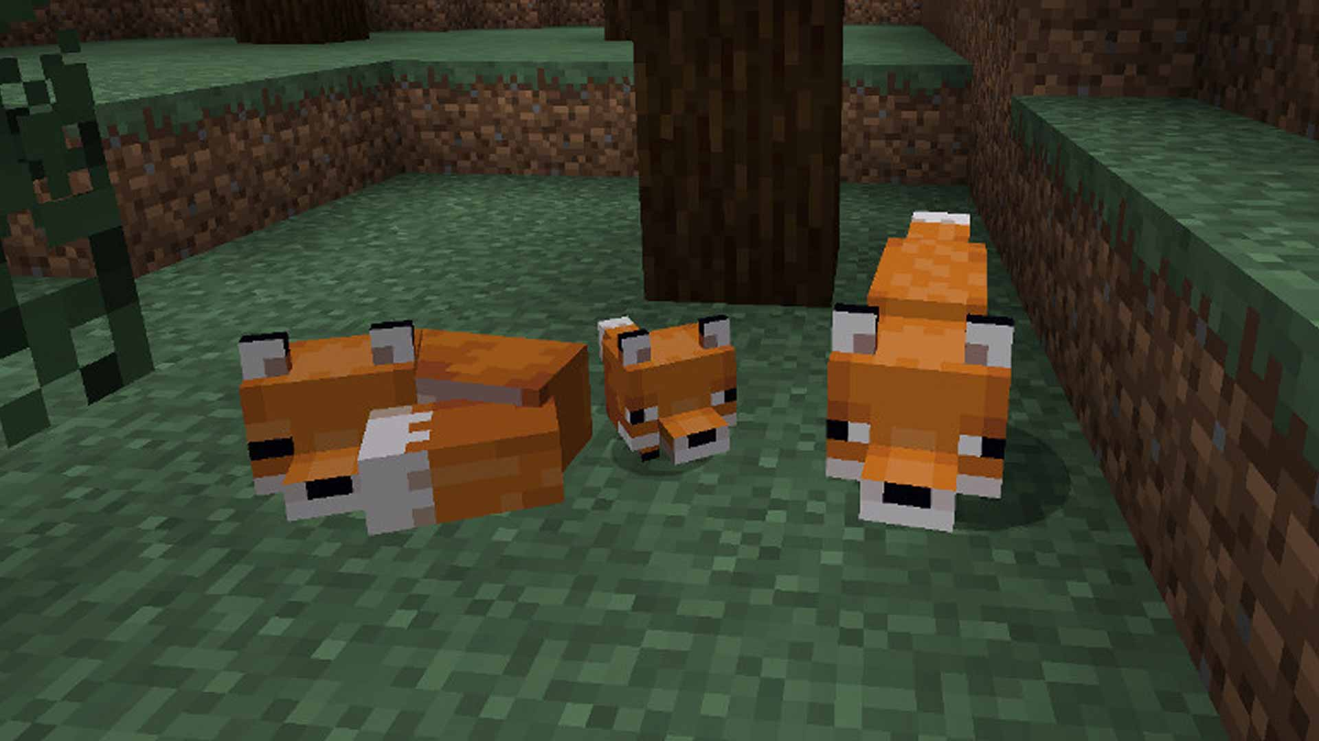 How To Tame A Fox In Minecraft And Make A New Friend Gamesradar