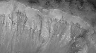 Dark streaks known as recurring slope lineae (RSL) on the walls of Mars' Palikir Crater, as seen by NASA's Mars Reconnaissance Orbiter. RSL streaks may be evidence of liquid water.