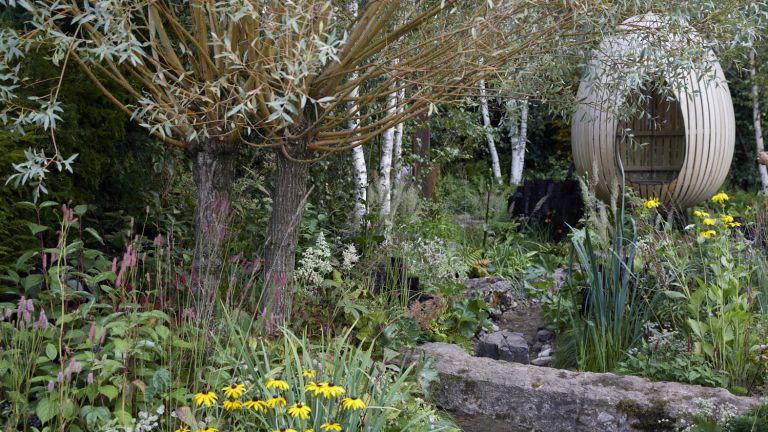 Yeo Valley organic garden designed by Chelsea Flower Show