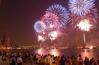 fireworks, pets